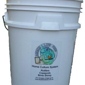 HCS Bucket